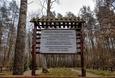Cmentarz z czasów I wojny światowej w Krępie