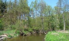 Rezerwat Skarpa Jeziorki