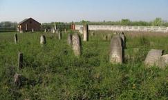 Cmentarz Żydowski w Mszczonowie
